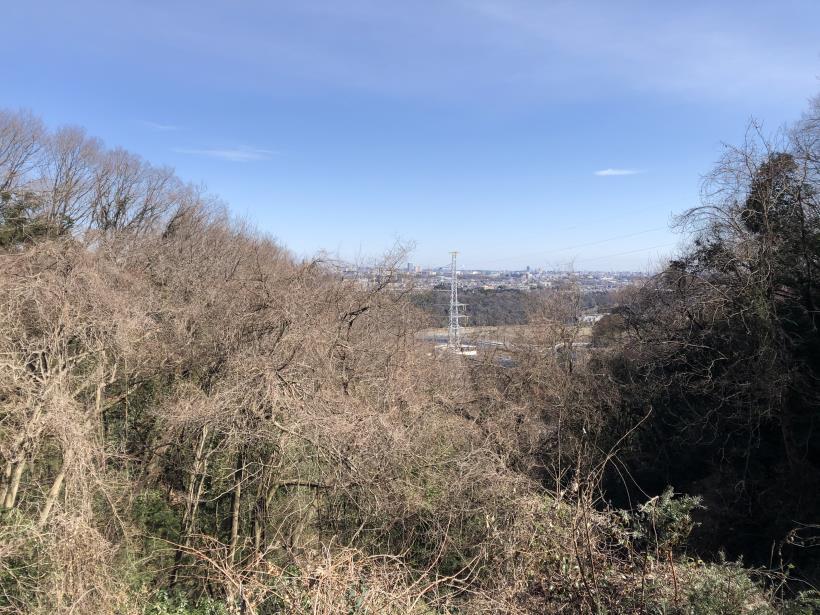 城山登山口から鷹射場65