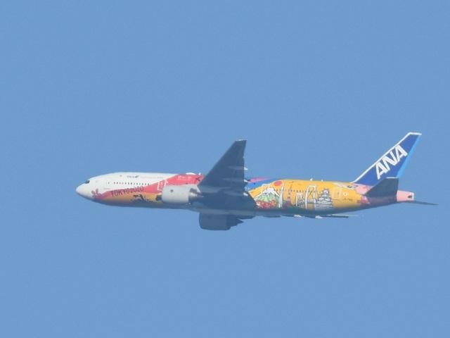 飛行機6p