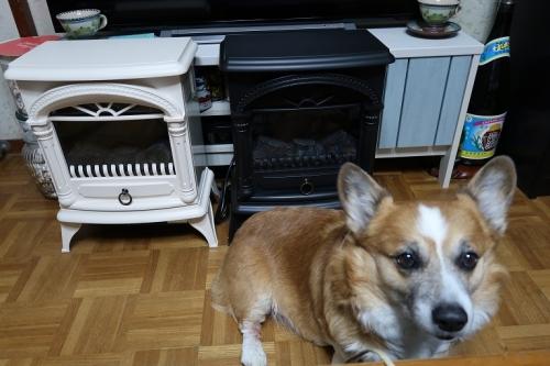 ニトリの暖炉っぽいストーブ