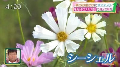20191017-190901-380.jpg