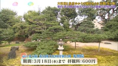 20200201-192944-385.jpg