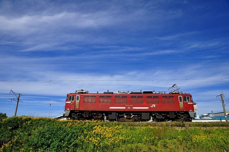 DSC_9351-2.jpg