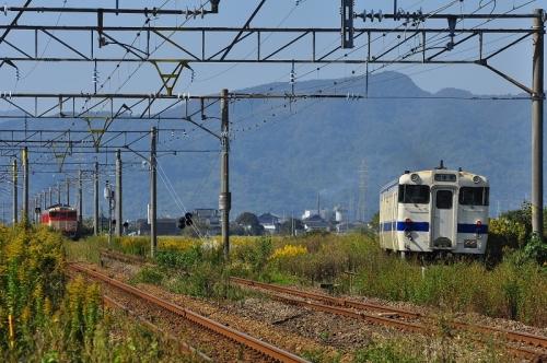 DSC_9492-1.jpg
