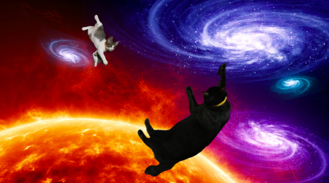 ali_and_meow_in_the_universe.png
