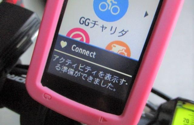 aIMG_1005.jpg