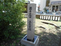 DSCN7742.jpg