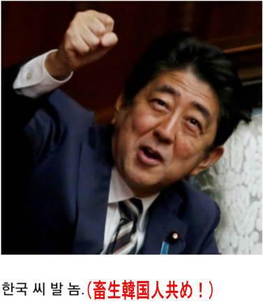 [韓国の反応]アメリカが日本をホワイト国から除外へ韓国ネット民「また韓国のせいだと騒ぐんだろうな」03