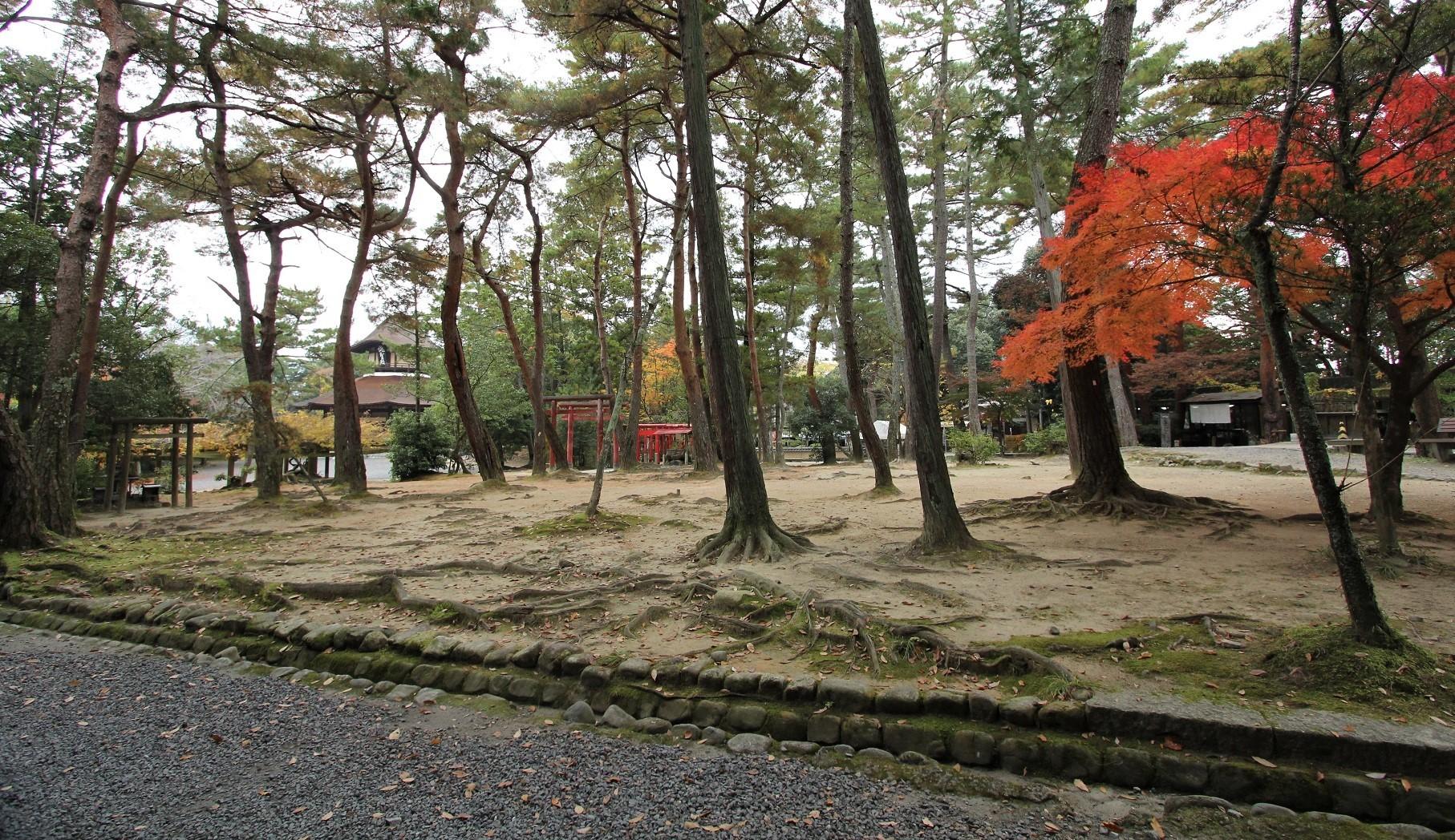 伊賀 上野公園1
