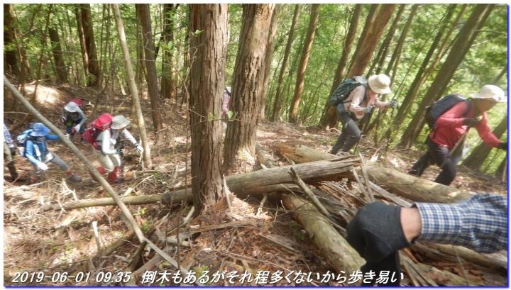 190601_AkaoYama_BisyamonYama_008.jpg