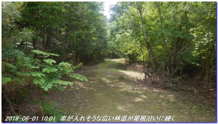 190601_AkaoYama_BisyamonYama_011.jpg