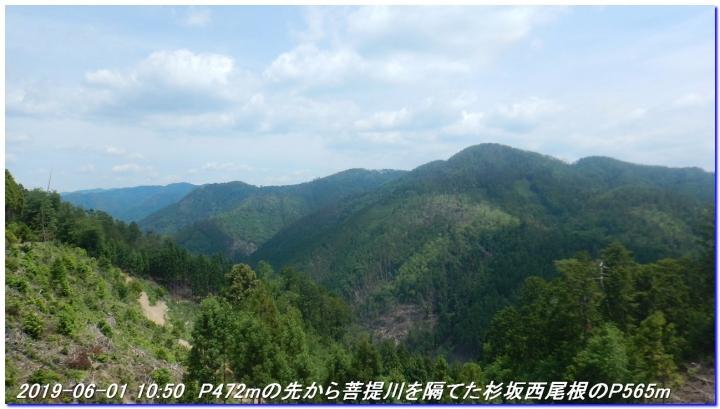 190601_AkaoYama_BisyamonYama_019_2019082919234063b.jpg