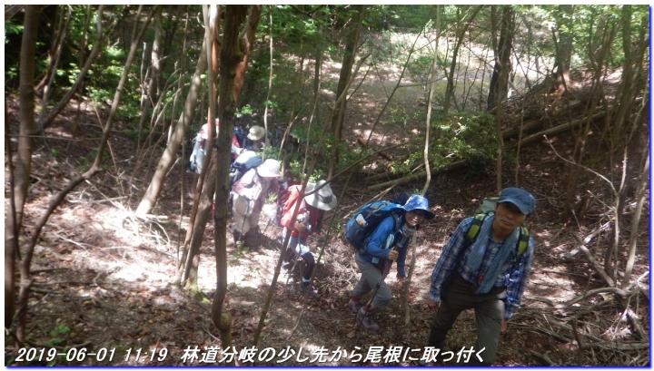 190601_AkaoYama_BisyamonYama_023.jpg