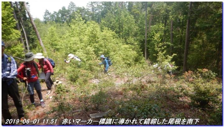 190601_AkaoYama_BisyamonYama_025.jpg