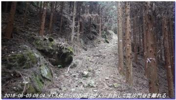 190605_BisyamonDaniNishiOne_NishiSawayama_003.jpg