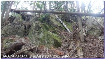 190605_BisyamonDaniNishiOne_NishiSawayama_010.jpg