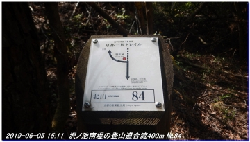 190605_BisyamonDaniNishiOne_NishiSawayama_039.jpg