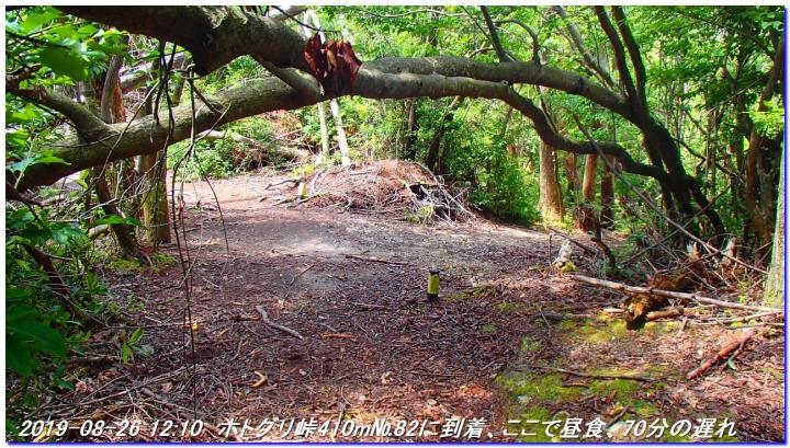 190826_Takahana_ShirosunaYama_SawanoIke_039_20190829161624599.jpg