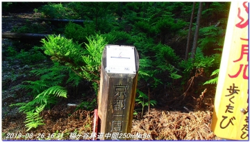 190826_Takahana_ShirosunaYama_SawanoIke_063.jpg