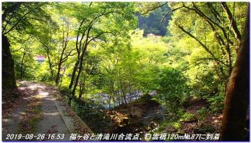 190826_Takahana_ShirosunaYama_SawanoIke_064.jpg