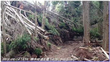 190914_BisyamonDaniNishione_BisyamonYama_031.jpg