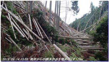 190914_BisyamonDaniNishione_BisyamonYama_033.jpg