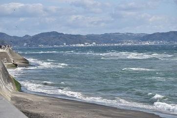 七里ヶ浜-2_20200212