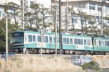 七里ヶ浜-3_20200212