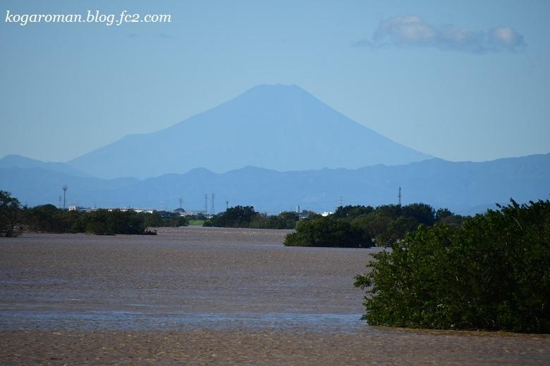 台風後の思川3