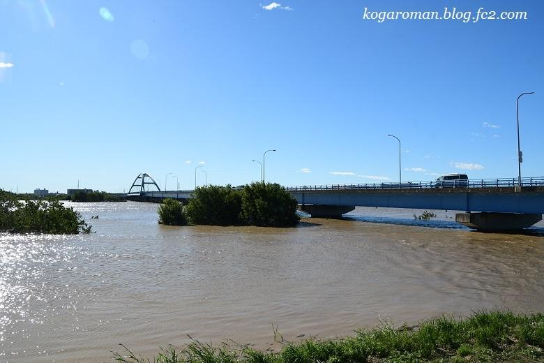 台風後の思川