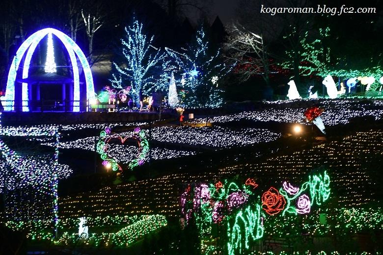 茨城県フラワーパークのイルミネーション2