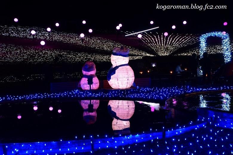 茨城県フラワーパークのイルミネーション6