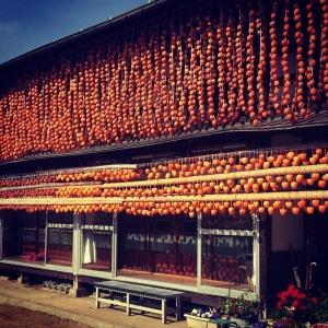 甲州市塩山の吊るし柿