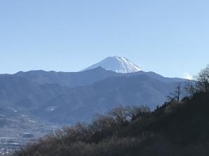 春日居からの富士