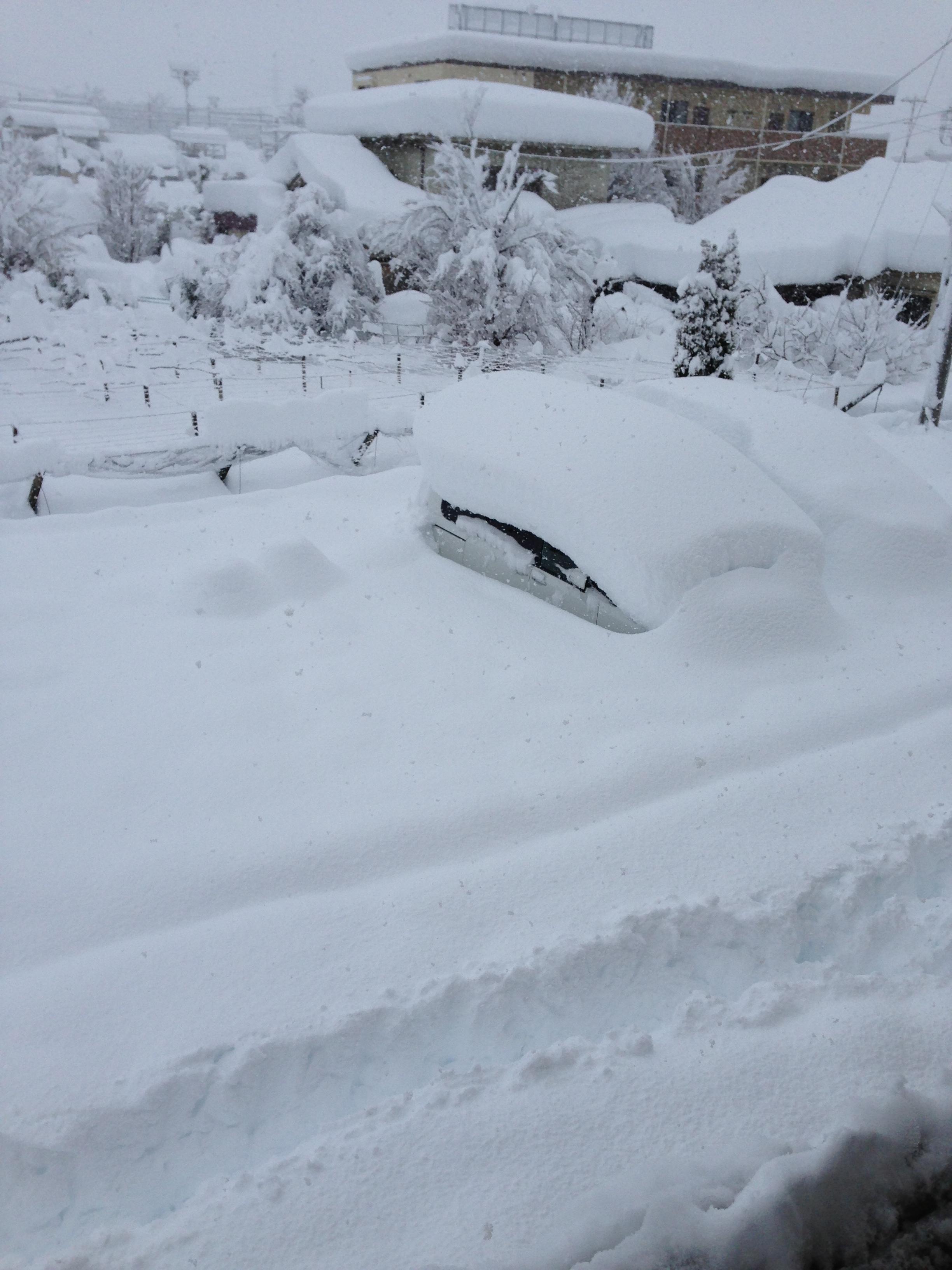 2014年の大雪1