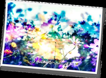 Shangri-La 2