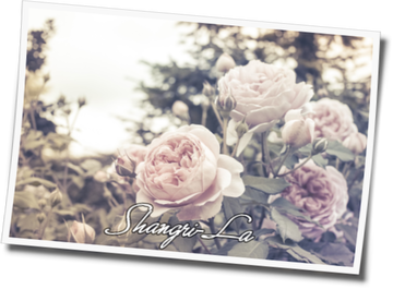 Shangri-La 4