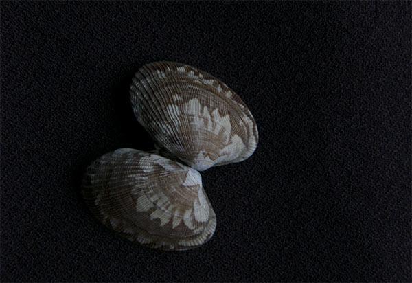 190902-94.jpg