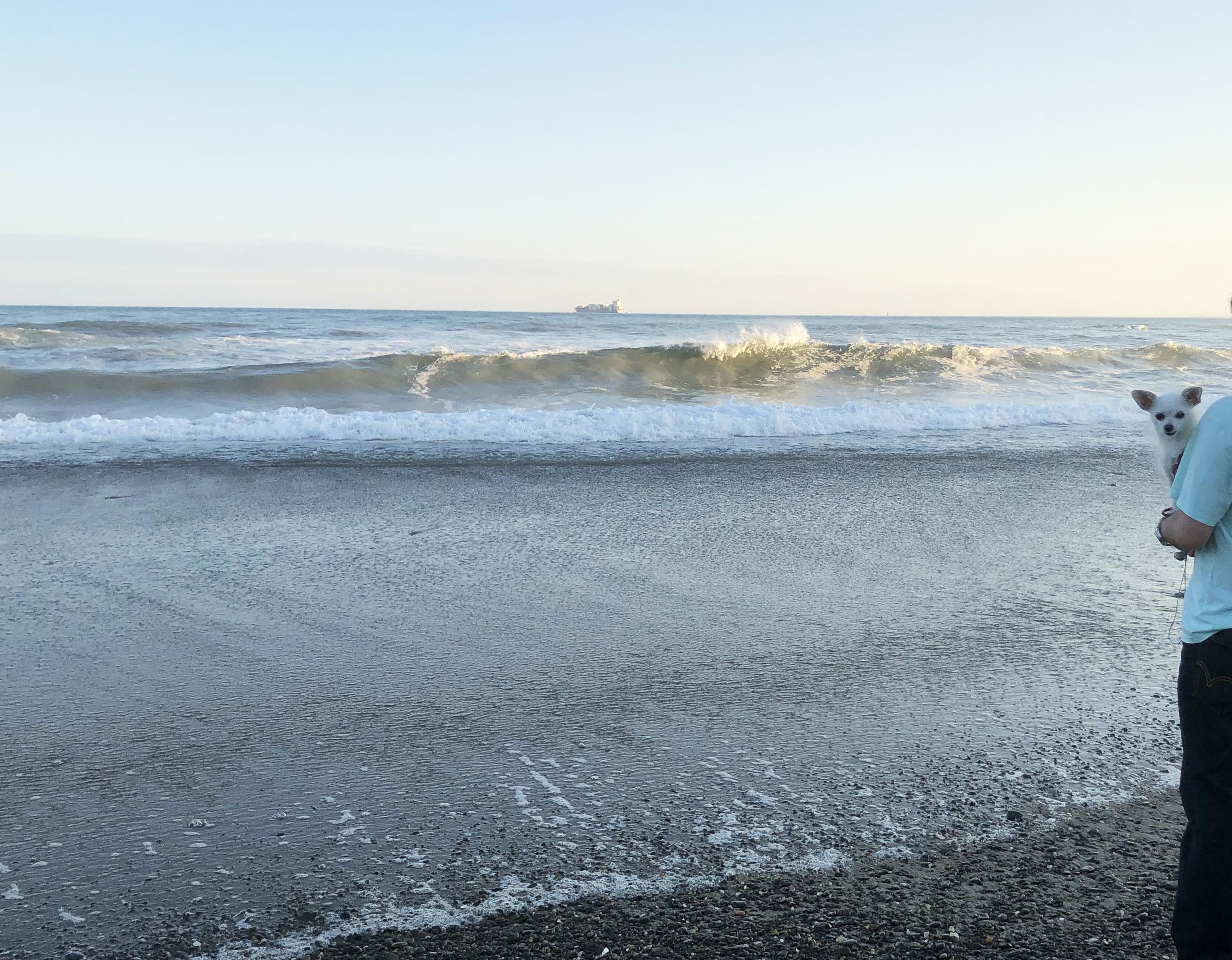 1909海は広いな01