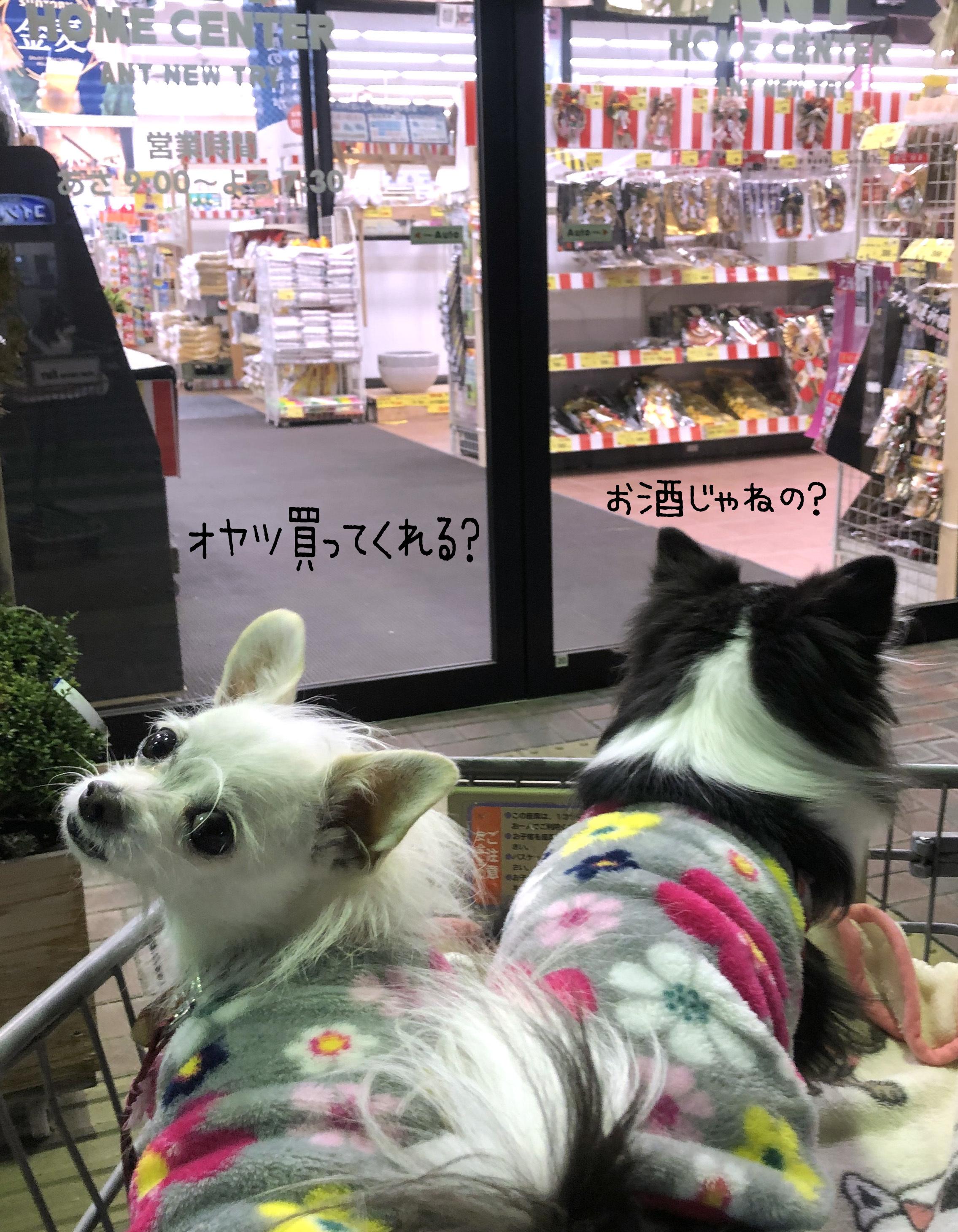 2019年の瀬に買物02