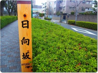 mini_14_hyuga_P2220797.jpg