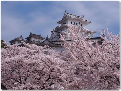 mini_15_20150404_mini_himejijou_P4042741.jpg