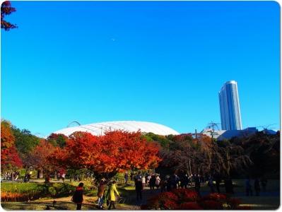 mini_16_kourakuen_PB294029.jpg