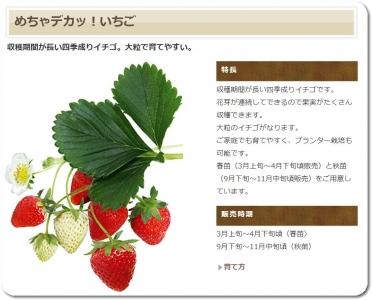 mini_8811_metyadeka_del.jpg