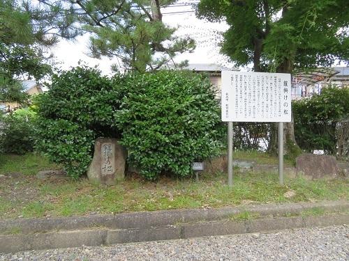 nagakuteti (1)