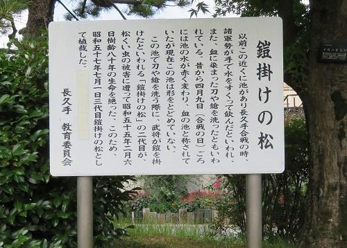 nagakuteti (2)
