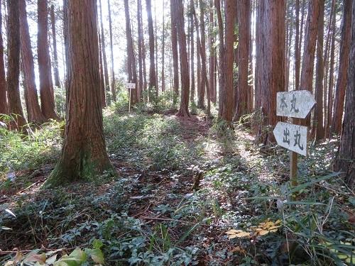 nojiri (5)