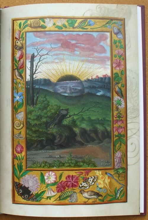 splendor solis 07