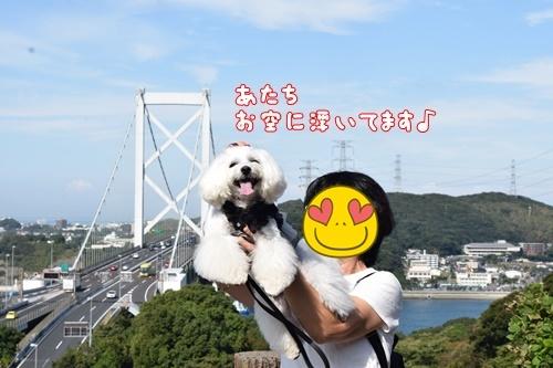 りんちゃん訪問10