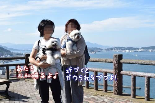 りんちゃん訪問11