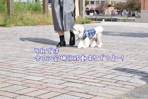 りんちゃん訪問20